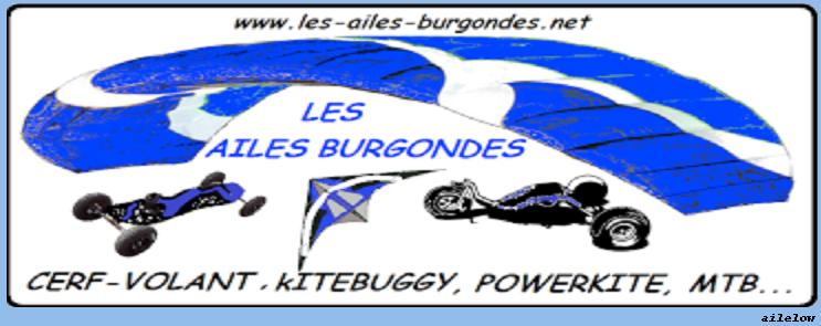 LES AILES BURGONDES