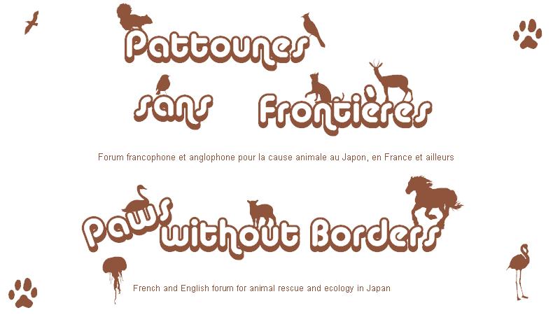 Pattounes sans Frontières