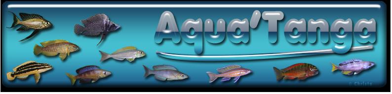 Aqua'Tanga