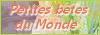 Petites Bêtes du Monde, forum animalier