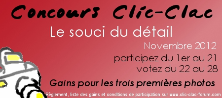 Concours photo Clic-Clac de Novembre, Le souci du détail