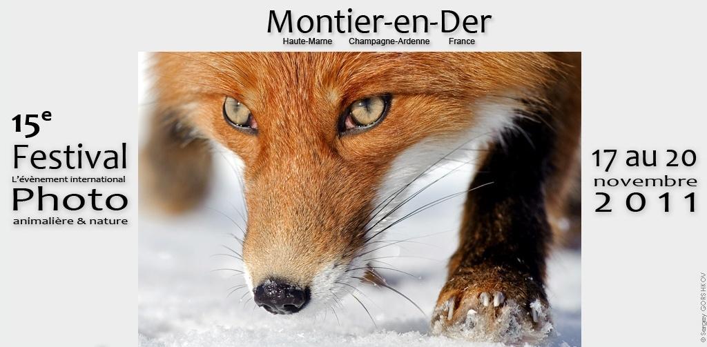évènement photo 15ème Festival international de la Photo Animalière et de Nature par la ville de Montier en Der