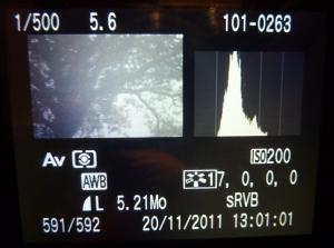 Aperçu des détails d'une photo sur un Canon EOS 450D pour le passage à l'heure d'hiver