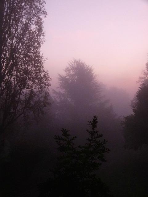 Quand la nature se réveille... dans Message du jour 00610