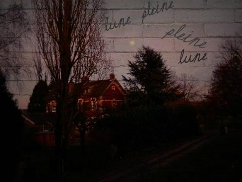 Petite lune, rond de sorcière...  dans Le jardin des souvenirs 01912