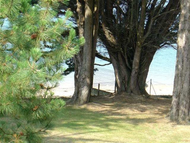 Sur la mer...  dans Le jardin des souvenirs 05710