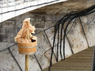 Un singe sur un mât sans navire...  dans Le jardin des souvenirs 05810