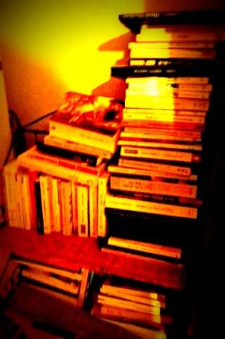 des livres, des livres, des livres....  dans Message du jour 07612