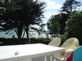Parfois un rayon de soleil sur la terrasse...  dans Le jardin des souvenirs 09010