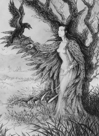 Les oiseaux noirs dans Les Oiseaux Noirs bg10