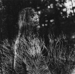 Imogen Cunningham - Photographe dans Photographes ic_dre11