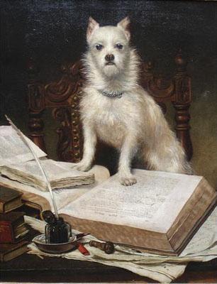 chien lisant un livre