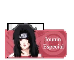 Special Jounin