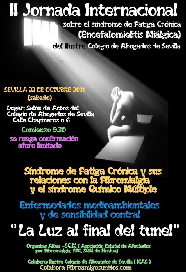 II Jornada Internacional sobre síndrome de fatiga crònica a Sevilla