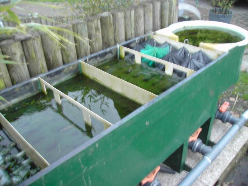 M thode nettoyage filtre multichambres forum aquajardin for Filtre etang