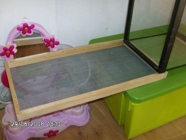 vos terrariums pour phasmes. Black Bedroom Furniture Sets. Home Design Ideas