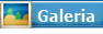 Galer�a