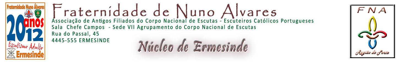 FNA N�cleo de Ermesinde