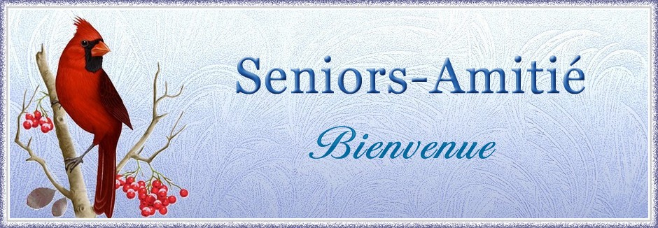 Seniors Amitié