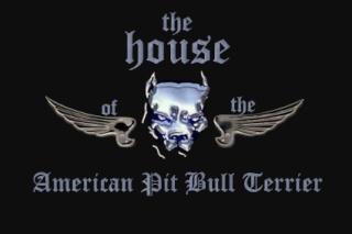 La Casa del  American Pit Bull Terrier