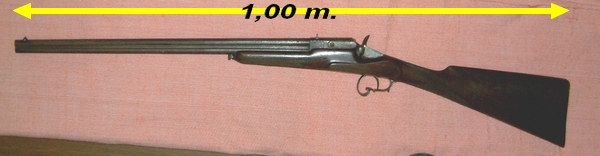 Tir longue distance afficher le sujet identification for Carabine de jardin
