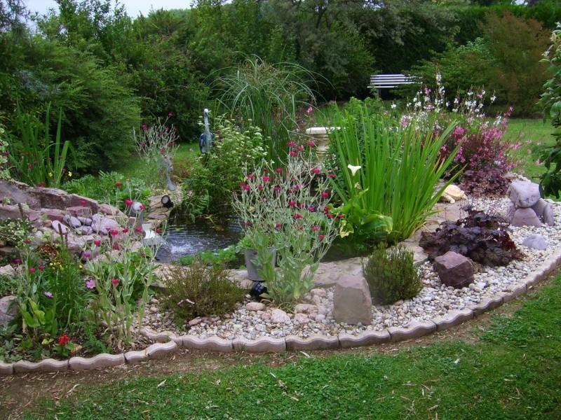 Concours du plus beau bassin de jardin saison 2011 page 2 for Beaux arbres de jardin