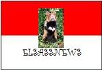 Le forum préféré du Grand Hamster d'Alsace !