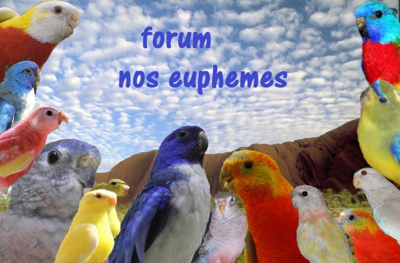 Nos Euphèmes
