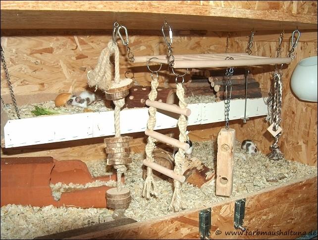 mäuse gehege selber bauen