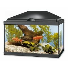 Vends aquarium 20l id al crevettes 51 10 envoi for Filtre aquarium 20l