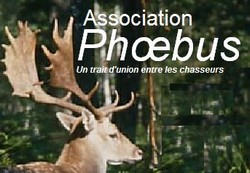 """chasse individuelle au grand gibier en France depuis 1997""."