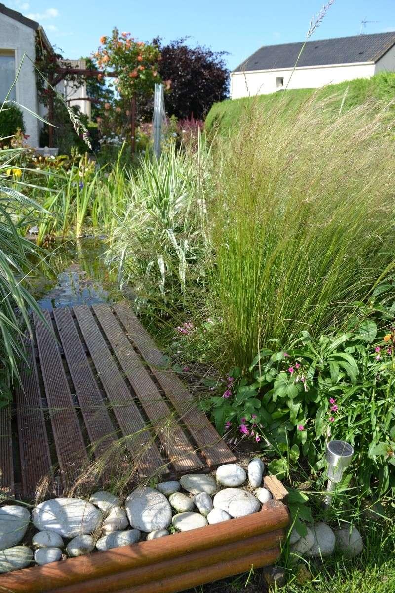 Mamzelle didounne76 mon petit bassin de jardin photos for Bac a poisson 500l
