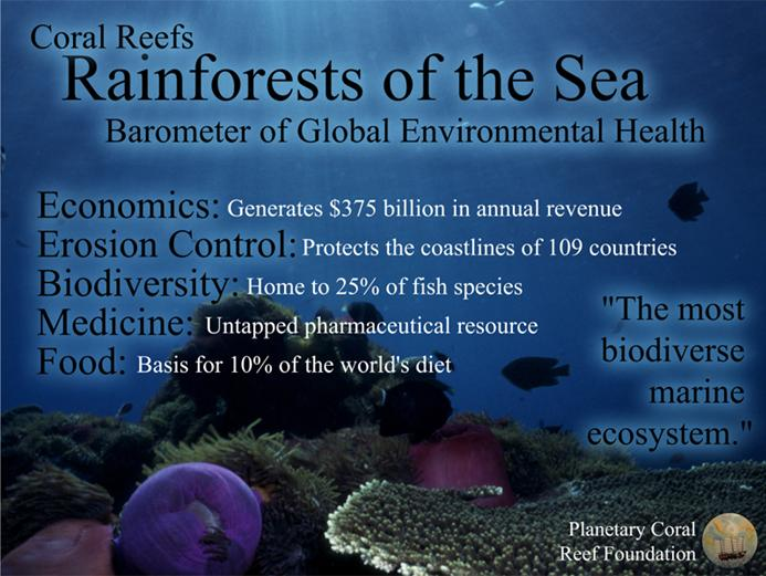 endangerment of coral reefs The endangerment of coral reefs is the result of various threats, such as over-fishing and increased water temperatures fortunately,.