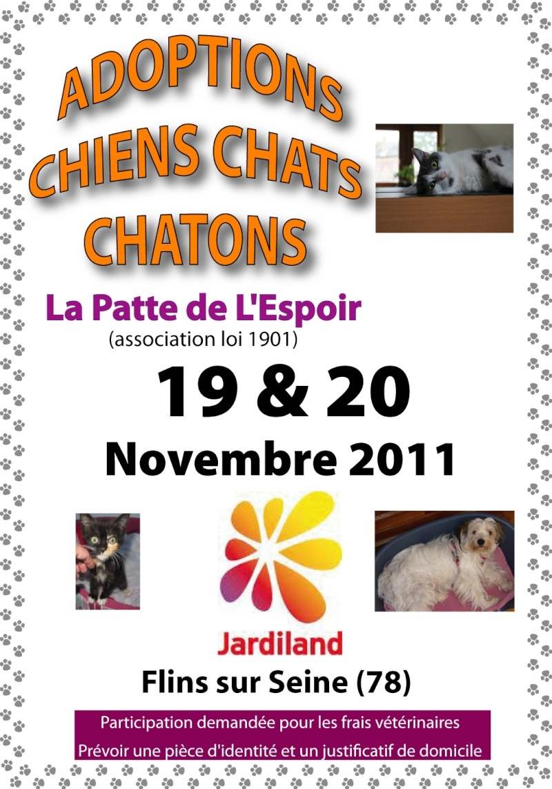 19 et 20 novembre 2011 week end adoption et boutique for Comemploi flins sur seine