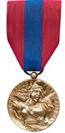 Membre Bronze