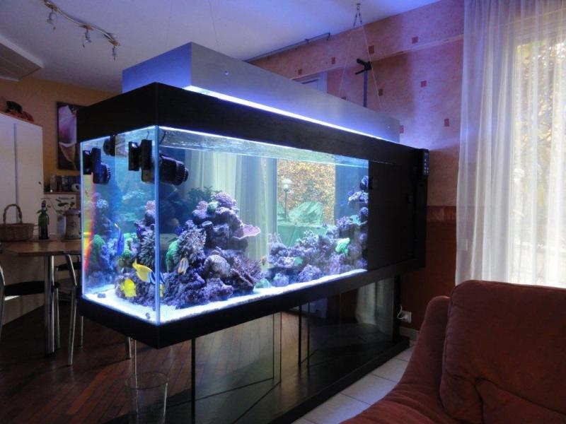 recifal france mon 800 litres sur pieds en verre albert25 pr sentation de vos bacs picos. Black Bedroom Furniture Sets. Home Design Ideas