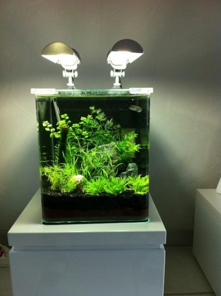 38 nano cube 20l d 39 adss. Black Bedroom Furniture Sets. Home Design Ideas