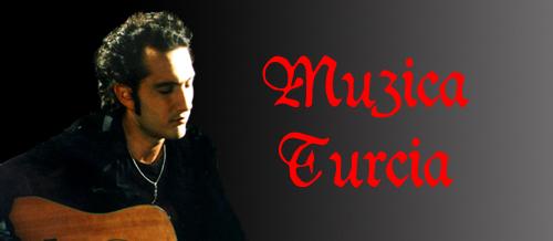 Muzica Turcia