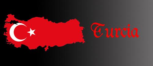 http://i49.servimg.com/u/f49/16/59/23/66/turcia11.png