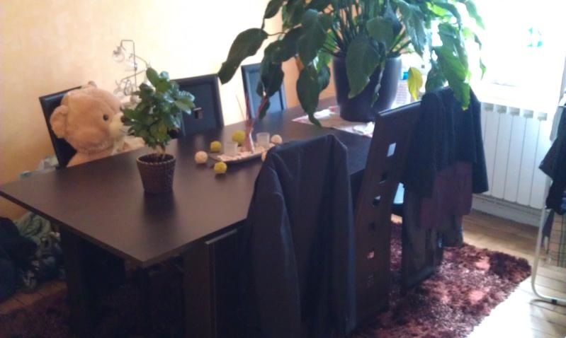 Salon salle manger refaire - Refaire son salon salle a manger ...