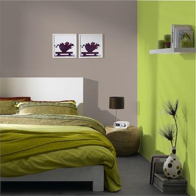 Helppp idee peinture pour salon urgent - Peinture lumineuse pour salon ...