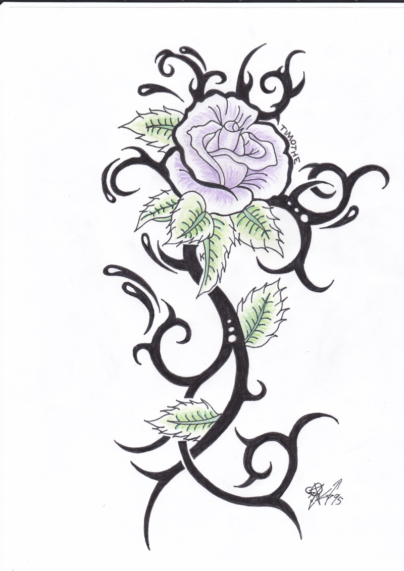Rose bleue dessin images - Rose dessin tatouage ...