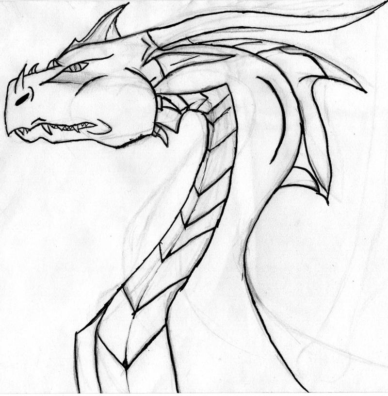 Des dragons tout sa au crayon a papier page 2 - Dessiner dragon ...